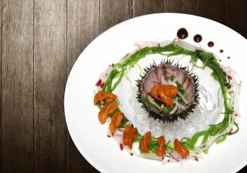 palau fish