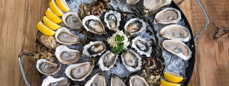 c_800_300_16777215_00_images_tours_food_menu-calgary-oysters.jpg